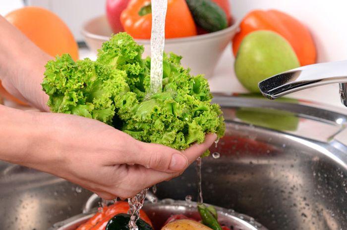 6. Cara Memilih Sayuran Segar - Tips Menyimpan Sayur